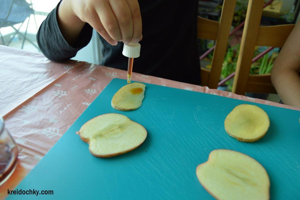 науковий експеримент для дітей