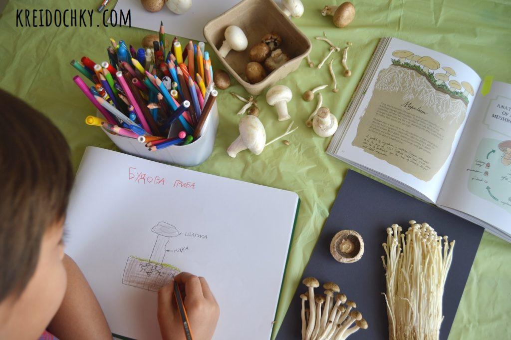 дітям про гриби заняття